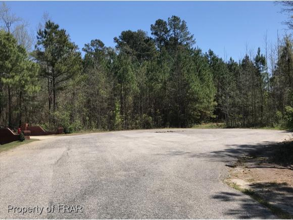 Residential Lot - RED SPRINGS, NC (photo 4)