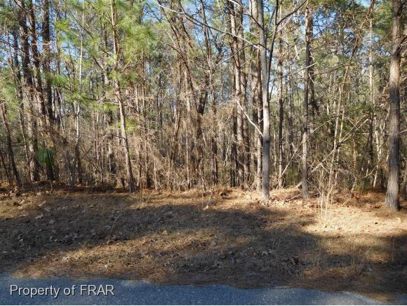 Residential Lot - FAYETTEVILLE, NC (photo 1)