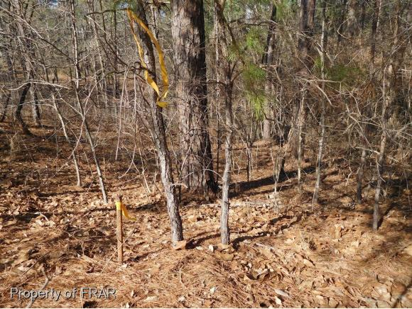 Residential Lot - FAYETTEVILLE, NC (photo 5)