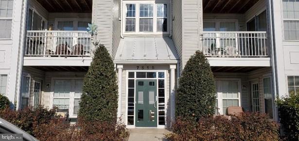 Colonial, Penthouse Unit/Flat/Apartment - ALEXANDRIA, VA