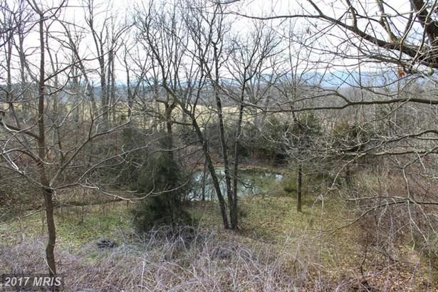 Lot-Land - RILEYVILLE, VA (photo 2)