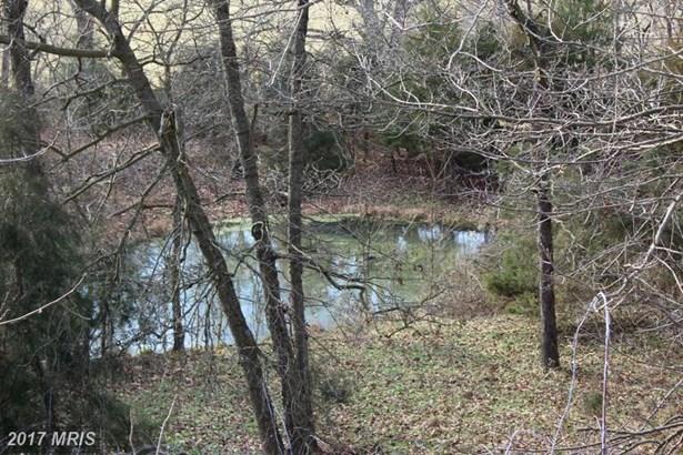Lot-Land - RILEYVILLE, VA (photo 3)