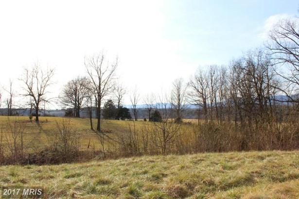 Lot-Land - RILEYVILLE, VA (photo 4)