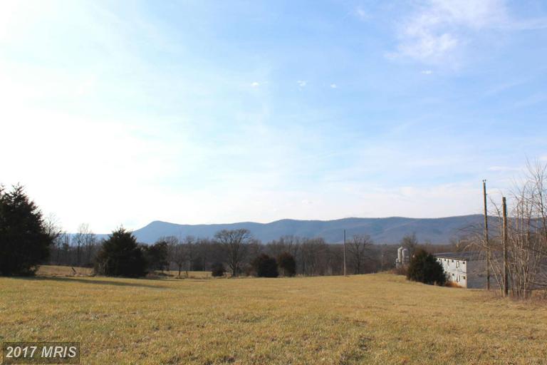Lot-Land - RILEYVILLE, VA (photo 5)