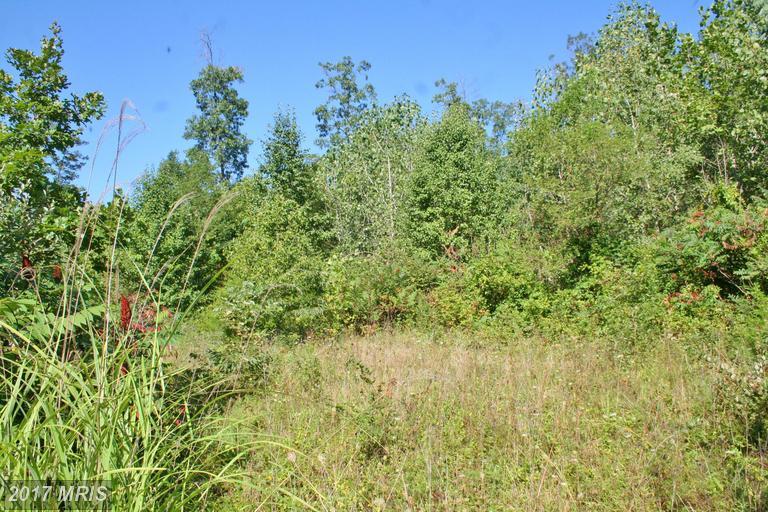 Lot-Land - LURAY, VA (photo 1)