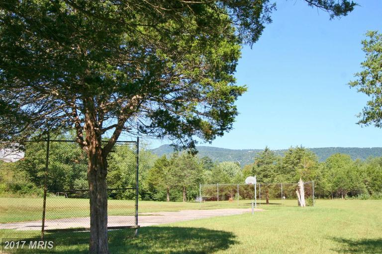 Lot-Land - LURAY, VA (photo 5)