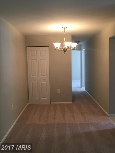 Condo,Garden 1-4 Floors - ALEXANDRIA, VA (photo 5)
