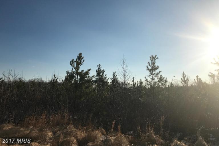 Lot-Land - SPOTSYLVANIA, VA (photo 1)