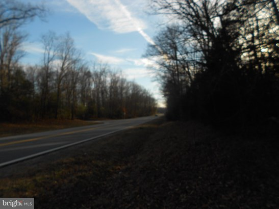 Land - BOWLING GREEN, VA (photo 3)