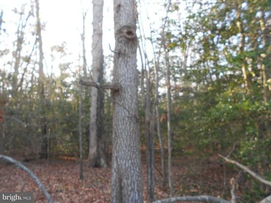 Land - BOWLING GREEN, VA (photo 4)