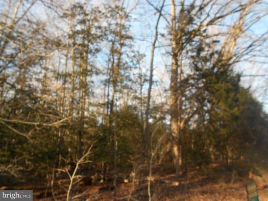 Land - BOWLING GREEN, VA (photo 5)