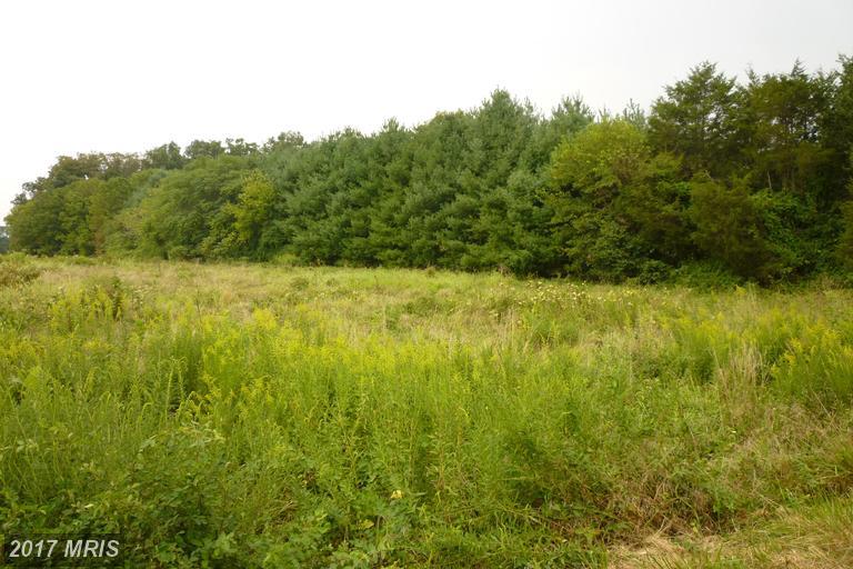 Lot-Land - CATLETT, VA (photo 1)
