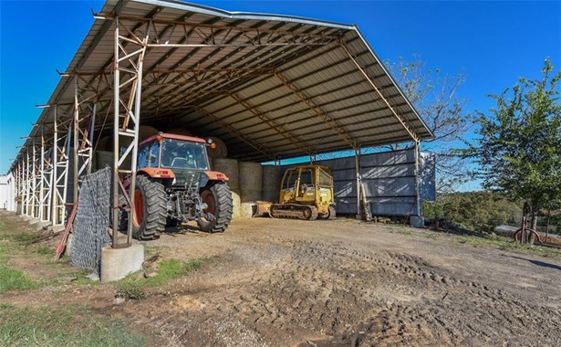 Cattle - Muldrow, OK (photo 4)