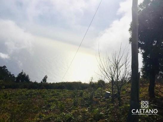 Land for sale in Calheta 80.000m2 Foto #1