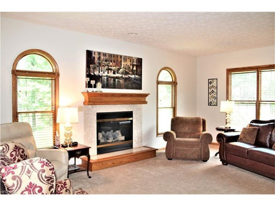 Gas Fireplace and Arched Transom Windows (photo 4)