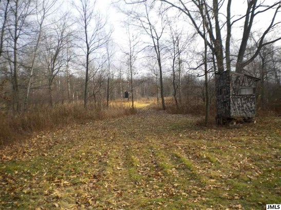 12759 Rountree Rd, Hanover, MI - USA (photo 5)