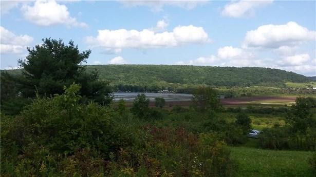 0 County Road 24, Tyrone, NY - USA (photo 1)