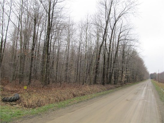 0 Lester Road, Conneautville, PA - USA (photo 3)