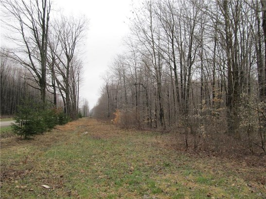 0 Lester Road, Conneautville, PA - USA (photo 4)