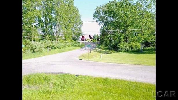 11330 Northmoor Drive, Cement City, MI - USA (photo 5)