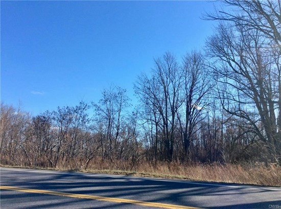 7840 State Route 13, Canastota, NY - USA (photo 1)
