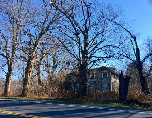 7840 State Route 13, Canastota, NY - USA (photo 3)