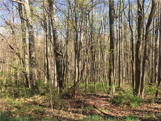 Lot 13 Mountain Laurel Lane, Farmington, PA - USA (photo 5)