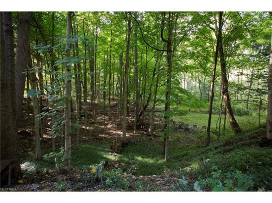 46000 S Woodland Rd, Hunting Valley, OH - USA (photo 5)