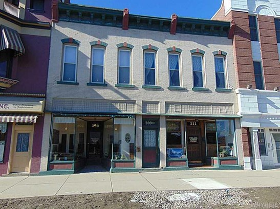 309 North Union Street, Knapp Creek, NY - USA (photo 1)