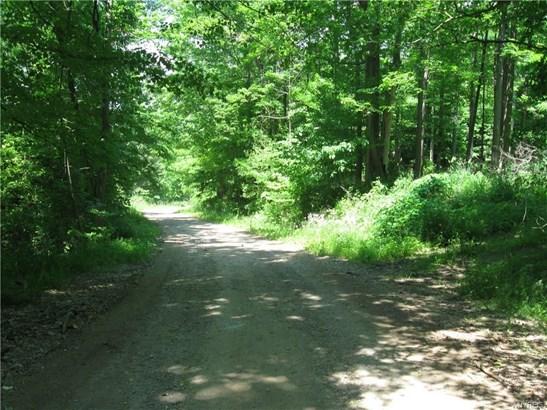 9488 Pennycook Road, Hunt, NY - USA (photo 2)