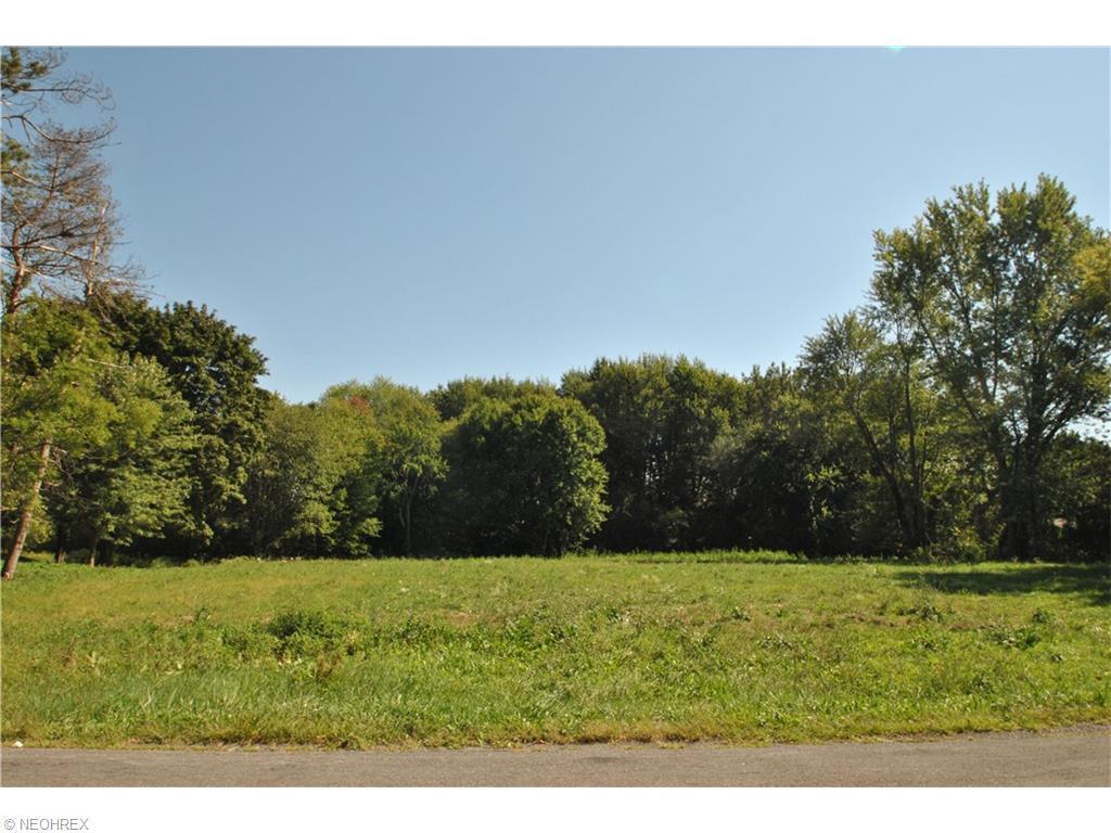 45 S/l Oak Tree Rd, Akron, OH - USA (photo 1)