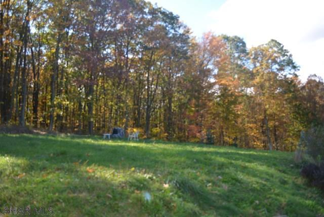 699 Gypsy Camp Hollow Rd, Tyrone, PA - USA (photo 4)