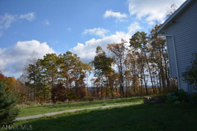 699 Gypsy Camp Hollow Rd, Tyrone, PA - USA (photo 5)