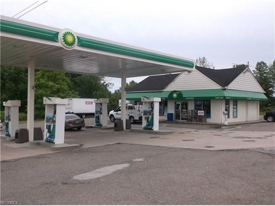 12411 Kinsman Rd, Newbury, OH - USA (photo 3)