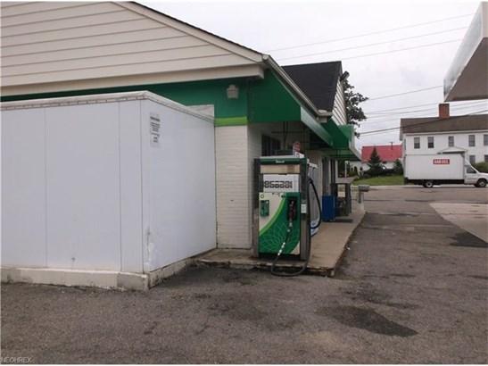 12411 Kinsman Rd, Newbury, OH - USA (photo 4)