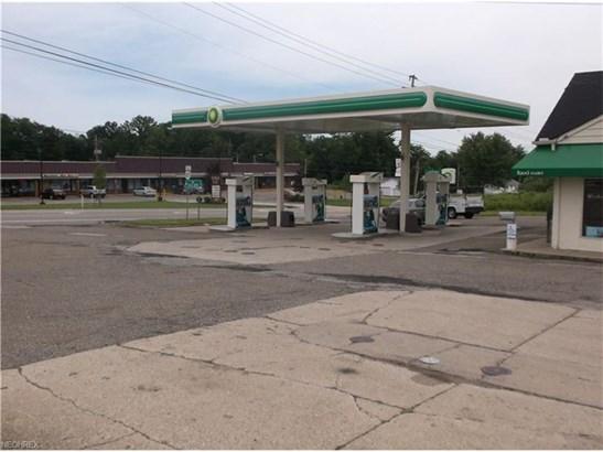 12411 Kinsman Rd, Newbury, OH - USA (photo 5)