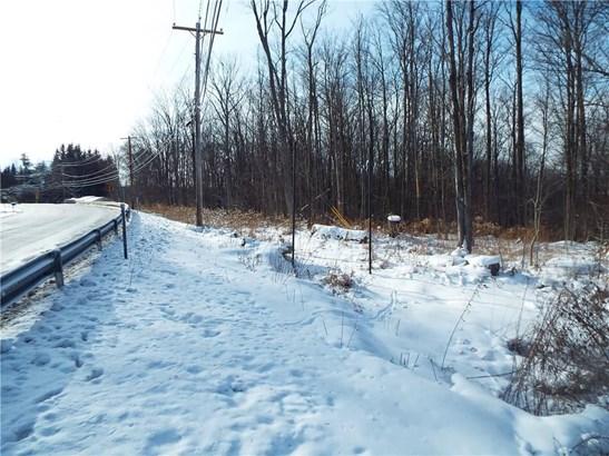 0 Nys Route 16, Allegany, NY - USA (photo 2)