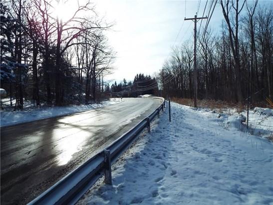 0 Nys Route 16, Allegany, NY - USA (photo 3)