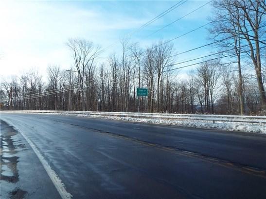 0 Nys Route 16, Allegany, NY - USA (photo 4)