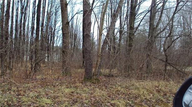 Lots 432r Pine & Warren Drive, Espyville, PA - USA (photo 1)