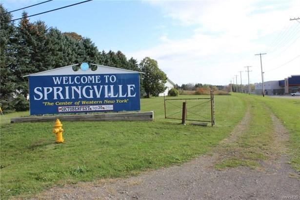 398 South Cascade Drive, Springville, NY - USA (photo 4)