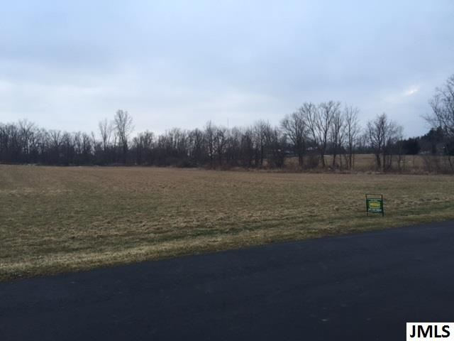Lot 2 Lisa Marie Dr, Eaton Rapids, MI - USA (photo 3)