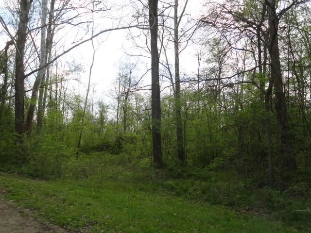 0 Chester Estates Drive Lot #129, Chesterville, OH - USA (photo 4)