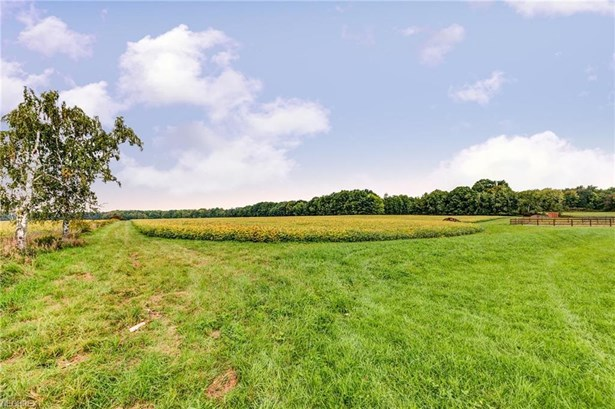 1073 (25 Acres) Stanhope Kelloggsville Rd, Dorset, OH - USA (photo 4)