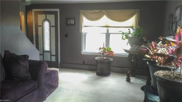 3602 Shelby Rd, Youngstown, OH - USA (photo 3)