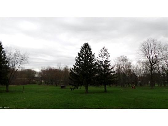 8598 Schubert Ne Ave, Alliance, OH - USA (photo 3)
