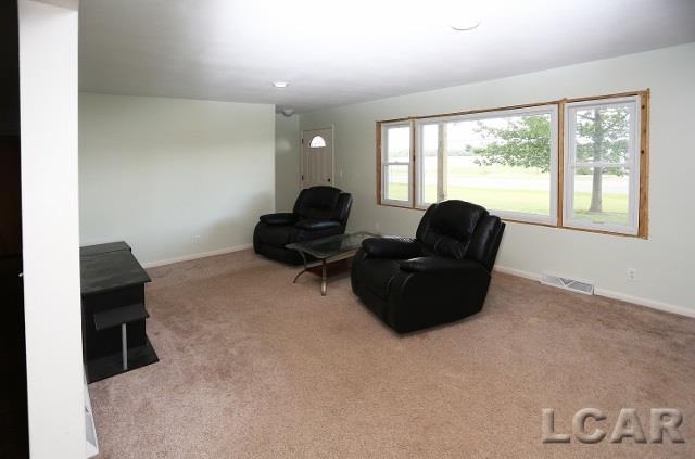 5890 W Beecher Rd, Adrian, MI - USA (photo 4)