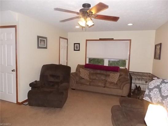 843 W Hopocan Ave, Barberton, OH - USA (photo 4)