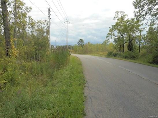 V/l Delamater Road, Angola, NY - USA (photo 4)