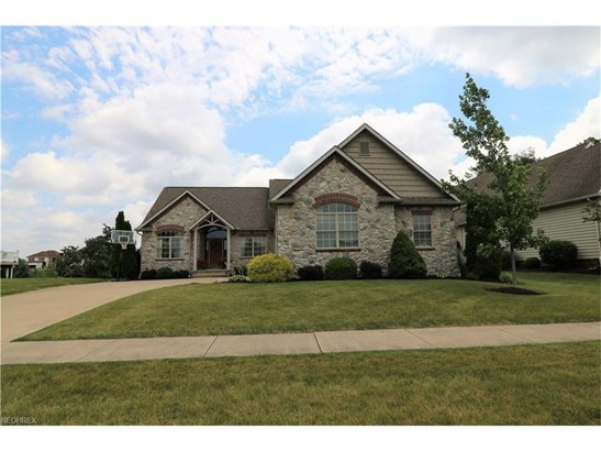 3955 Spring Brook, Wooster, OH - USA (photo 1)